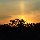 Mallee Sunset by bushdrover