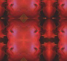 Ruby Meditation 39 by billiedee