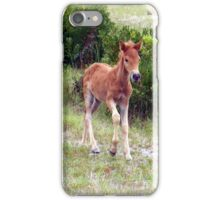 Born To Be Wild 2 iPhone Case/Skin