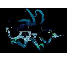 Deep Blue Octopus Photographic Print