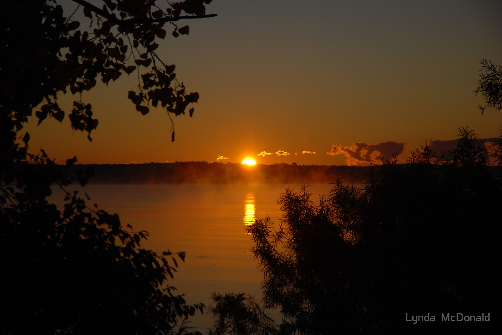 And The Sun Rose by Lynda   McDonald
