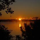 And The Sun Rose by Lynda   McDonald