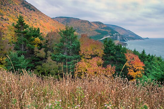 Autumn in the Highlands of Nova Scotia by EvaMcDermott