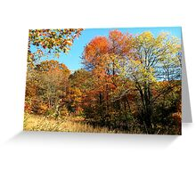 Golden Field, Bold Autumn Colors Greeting Card