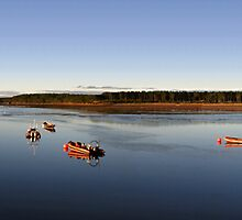 Calm Waters At Findhorn by Kevin Skinner