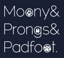 Moony & Pongs & Padfoot by Willowfield