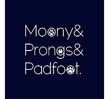Moony & Pongs & Padfoot Photographic Print