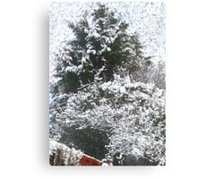 Snow Scene Canvas Print