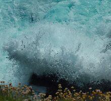 Splash by Brian Canavan