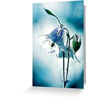 Gleam of Light Greeting Card