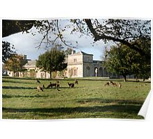 Studley Royal - The Stables Poster