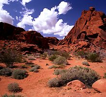 The Valley of Fire by steveberlin