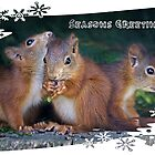 Seasonal Squirrels by Krys Bailey