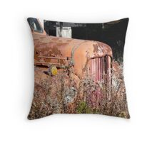 Rusting Away in the Weeds Throw Pillow
