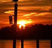Sunset On Union Avenue | Center Moriches, New York  by © Sophie W. Smith