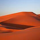 Dune by Karen Millard