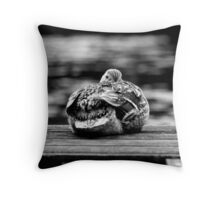 Here's Lookin At You Kid! The Sequel! Throw Pillow