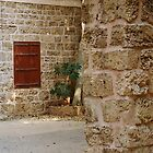 window by abzy