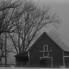 Old Barn by Tracey Hampton