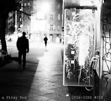 Diary of a Stray Dog 2006-20XX #018 by JT-Photos