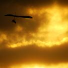 Hang gliding at sunset  by Samantha  Goode