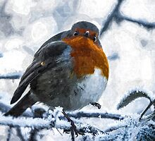 Artwork - Robin in the Snow by ncp-photography