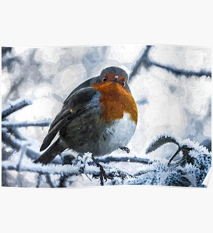 Artwork - Robin in the Snow Poster