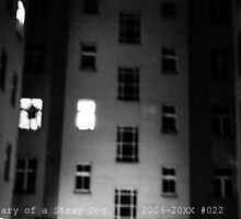 Diary of a Stray Dog 2006-20XX #022 by JT-Photos