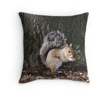 Do You Have A Peanut? Throw Pillow