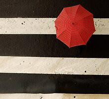 the red umbrella by shoshgoodman