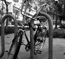 Easy Rider by Clayton  Turner