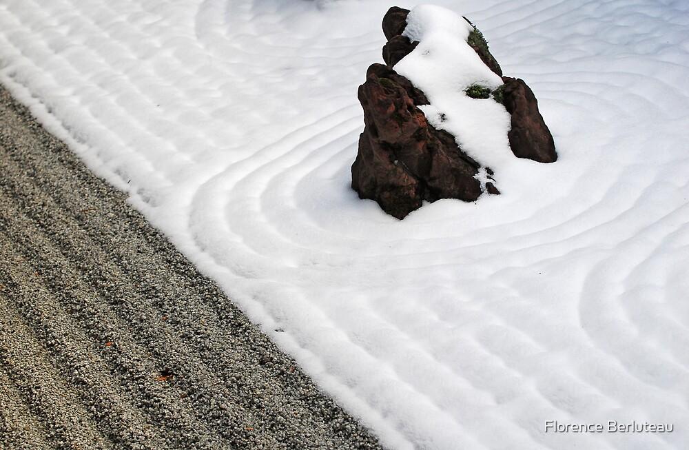 Winter Pattern by Florence Berluteau