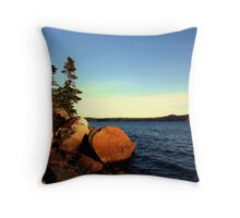 ORDINARY  THINGS Throw Pillow