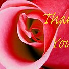 Card Red Rose Thank You by BobJohnson