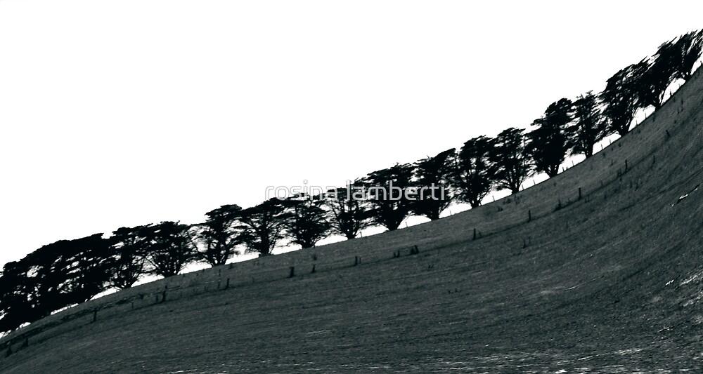 on a hill by Rosina  Lamberti