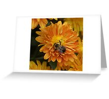 Happy Bumble Bee Greeting Card