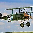 Fokker Dr.1 replica 403/17 SE-XXZ by Colin Smedley