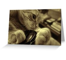 All Paws Greeting Card