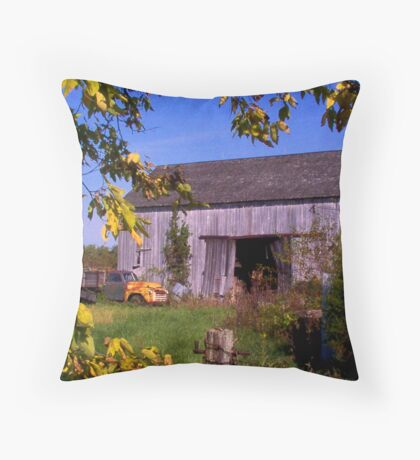Anyone For A Little Moonshine? Throw Pillow