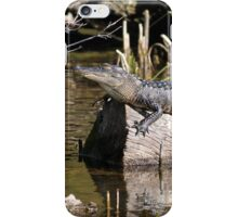 Gator Nap iPhone Case/Skin