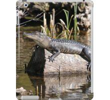 Gator Nap iPad Case/Skin