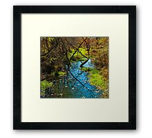 STREAM IN LATE AUTUMN Framed Print