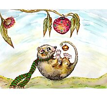 Jingle Possum Bells Photographic Print