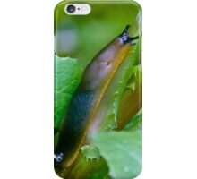 Slugs need love too! iPhone Case/Skin