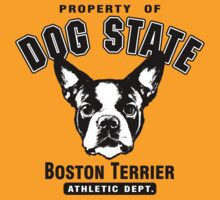 Dog State Boston Terrier by doggination