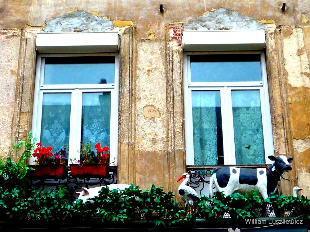 le balcon du costumier. Rue de Roubaix. Lille by William Lyszliewicz