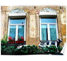 le balcon du costumier. Rue de Roubaix. Lille Poster