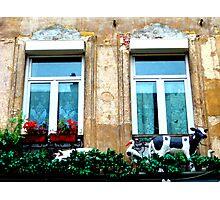 le balcon du costumier. Rue de Roubaix. Lille Photographic Print