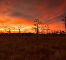 Fire in the Sky by Rob Lavoie