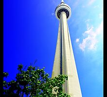 CN Tower by Jayson Babcock